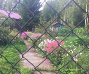 俄罗斯的乡村别墅