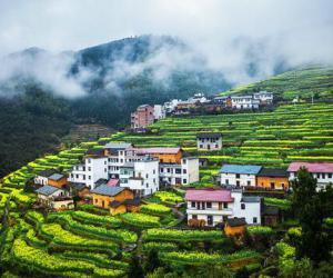 农村人居环境整治三年行动方案